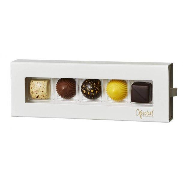 Xocolatl chokolade - 5 stk.