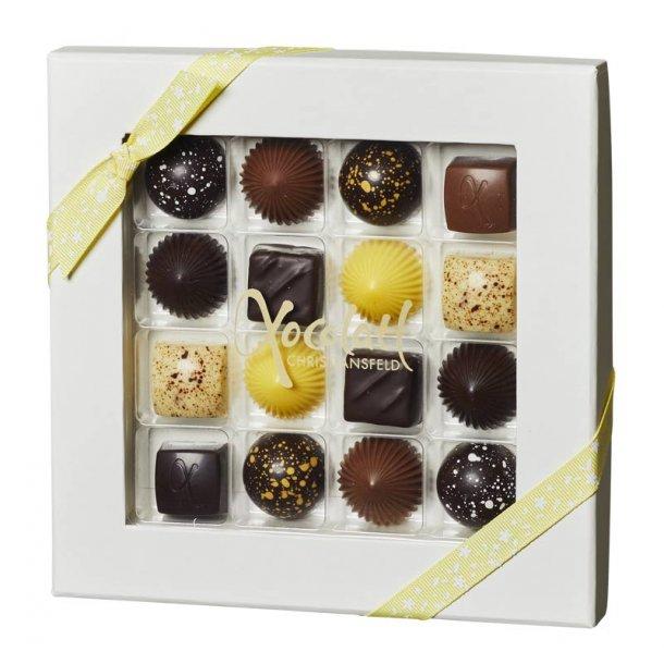 Xocolatl chokolade - 16 stk.