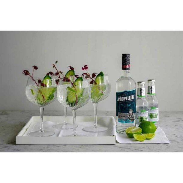 Årets gave med gin & 4 gin tonic glas