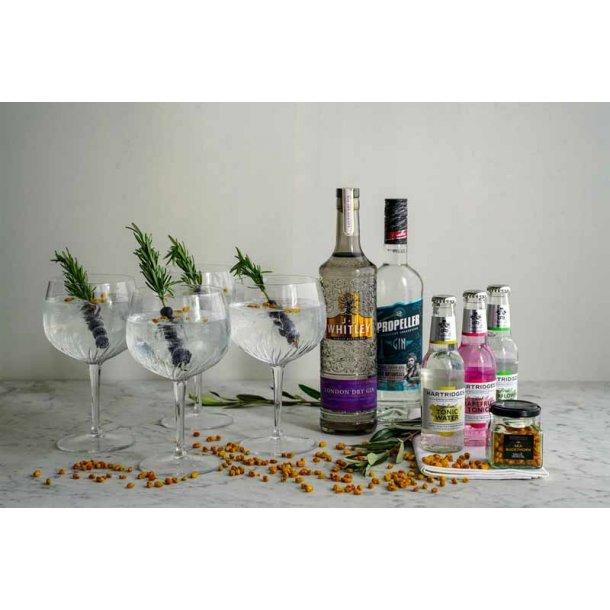 Årets gave med Gin - glas & tonic