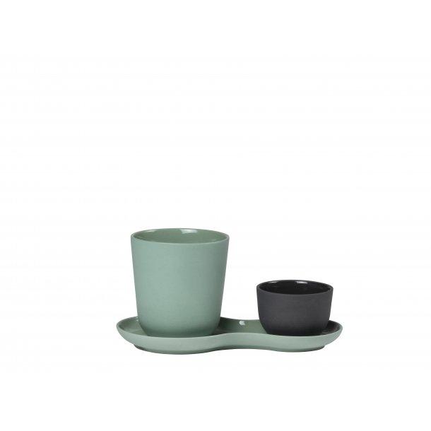 NUDGE Coffee & sweets - kale /liquorice